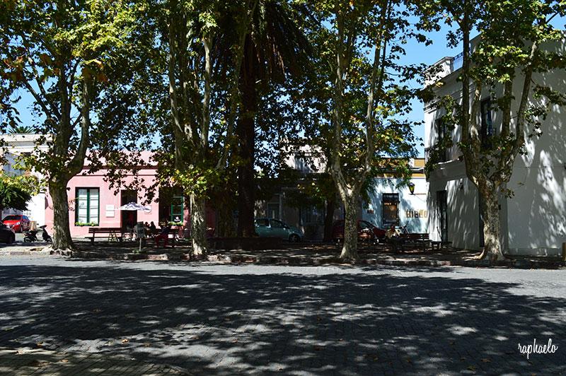 avenida-general-flores