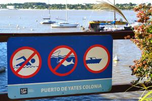 fotos-del-puerto-de-yates-de-colonia-3